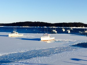 Iced in fishing boats